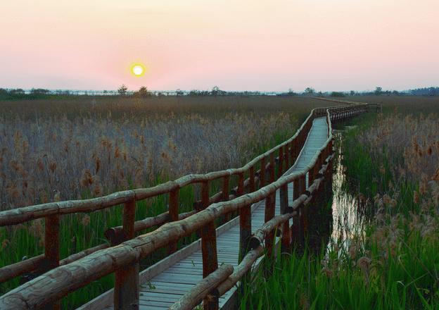 Oasi Lipu Lago di Massaciuccoli