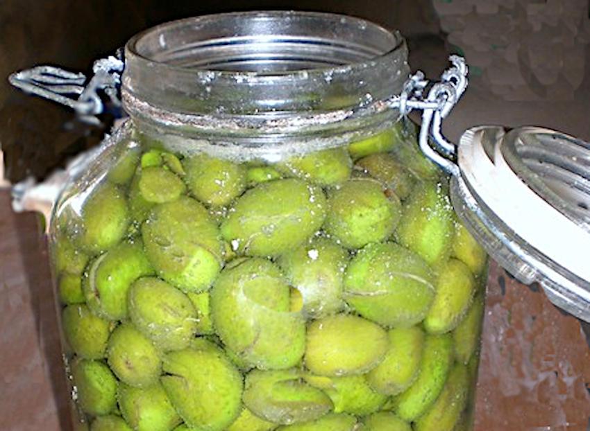 Olive in salamoia ricetta toscana