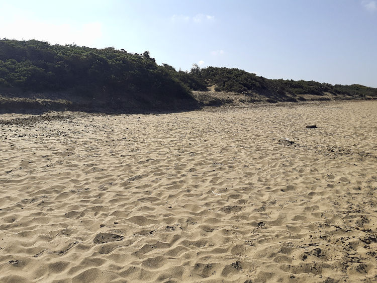Le dune del Parco Costiero